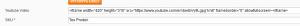 Youtube Video pada Halaman Produk Magento Website